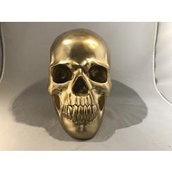 schedel goud large - 140100
