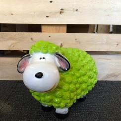 Trendy schaap - groen