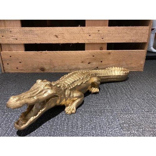 Krokodil goud 63cm