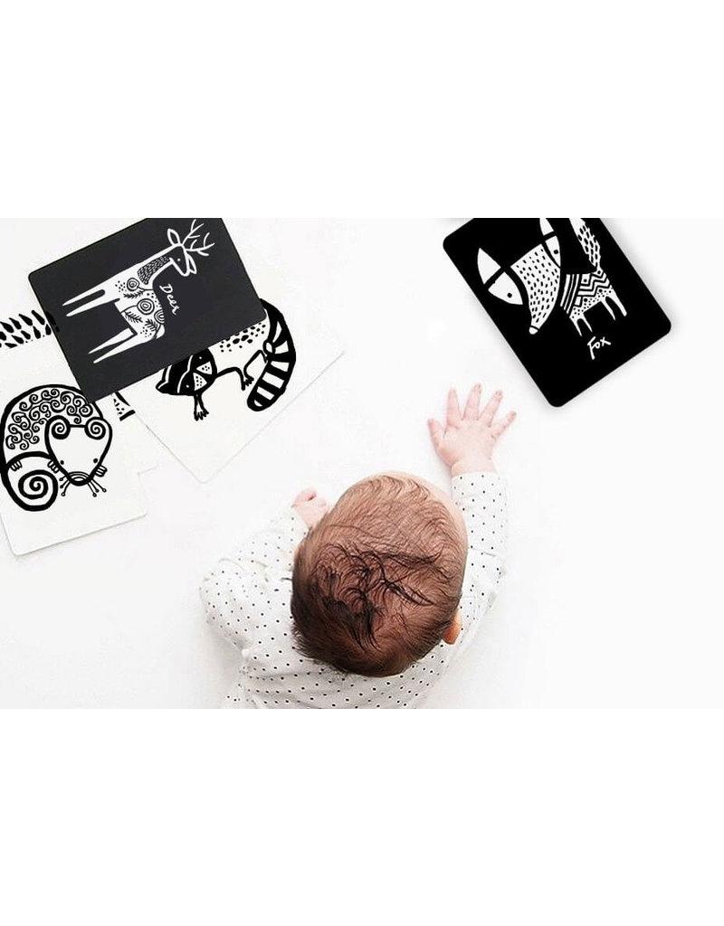 Wee Gallery Wee Gallery Art Cards - Regenwoud
