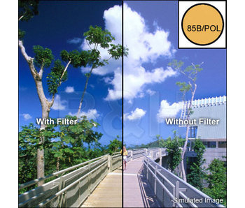 Tiffen Filters 4X4 85B POLARIZER FILTER - 4485BPOL