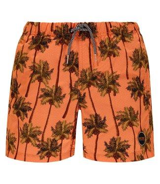 Shiwi Men Swim Short Coconuts Cantaloupe