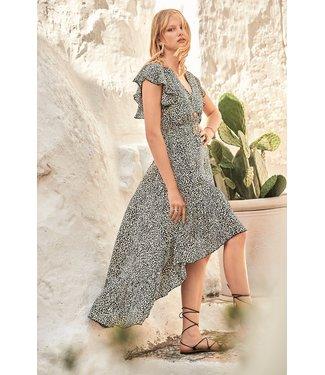 Iconique Donna Maxi Dress Leopard Mood Multicolor