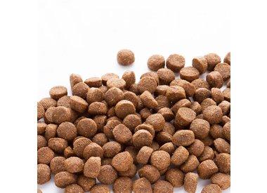 Hondenvoeding &  Natuurlijke Snacks