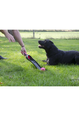 Dog Comets Dog Comets - Star Shooter