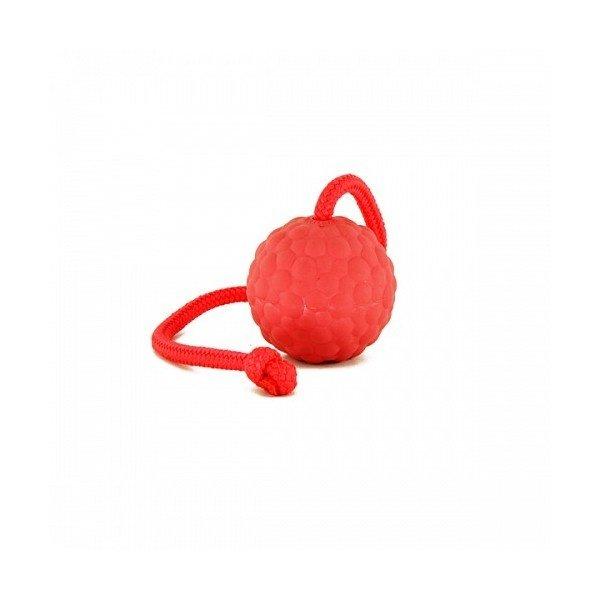 RadDog Volle Rubber Bal met touw 7cm