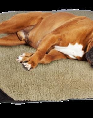 AFP Lamswol hondenbed