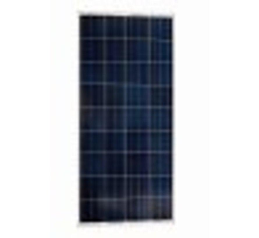 Victron BlueSolar 100Wp Poly  (1000x670x35mm)