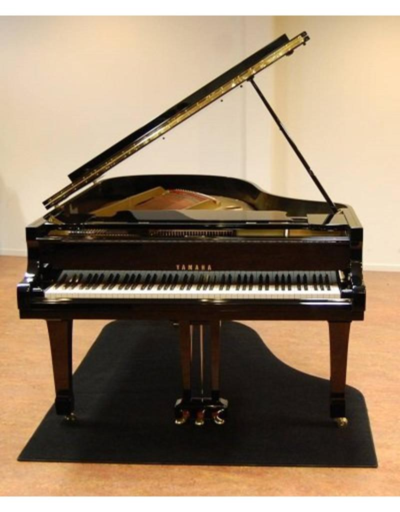 Pianocarpet Flügelcarpet Standard