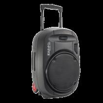 Ibiza PORT12UHF-MKII draagbaar geluidssysteem 700 Watt met accu en microfoons