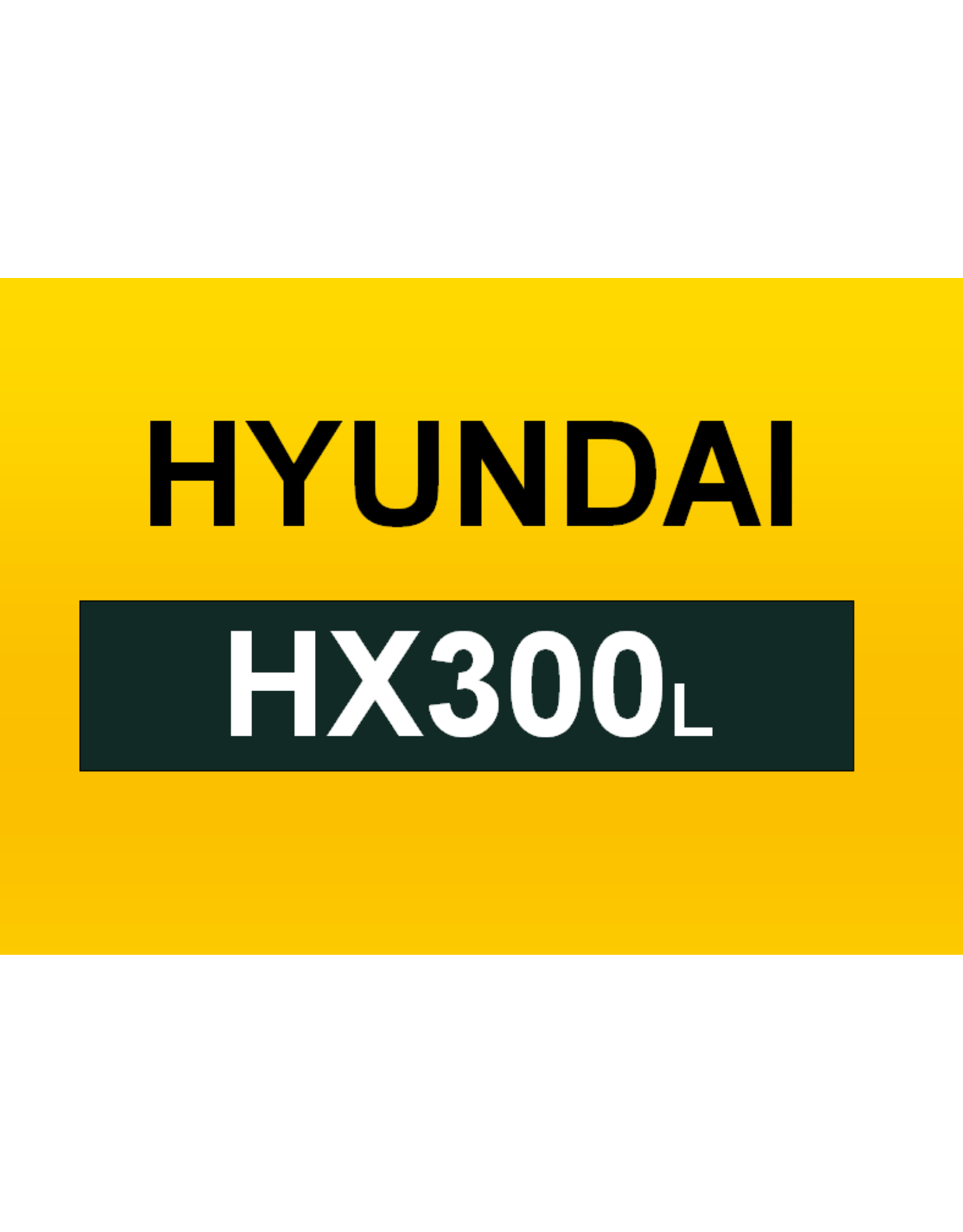 Echle Hartstahl GmbH FOPS for Hyundai HX300L
