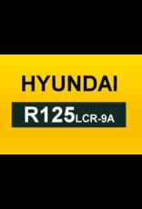 Echle Hartstahl GmbH FOPS for Hyundai R125LCR-9A