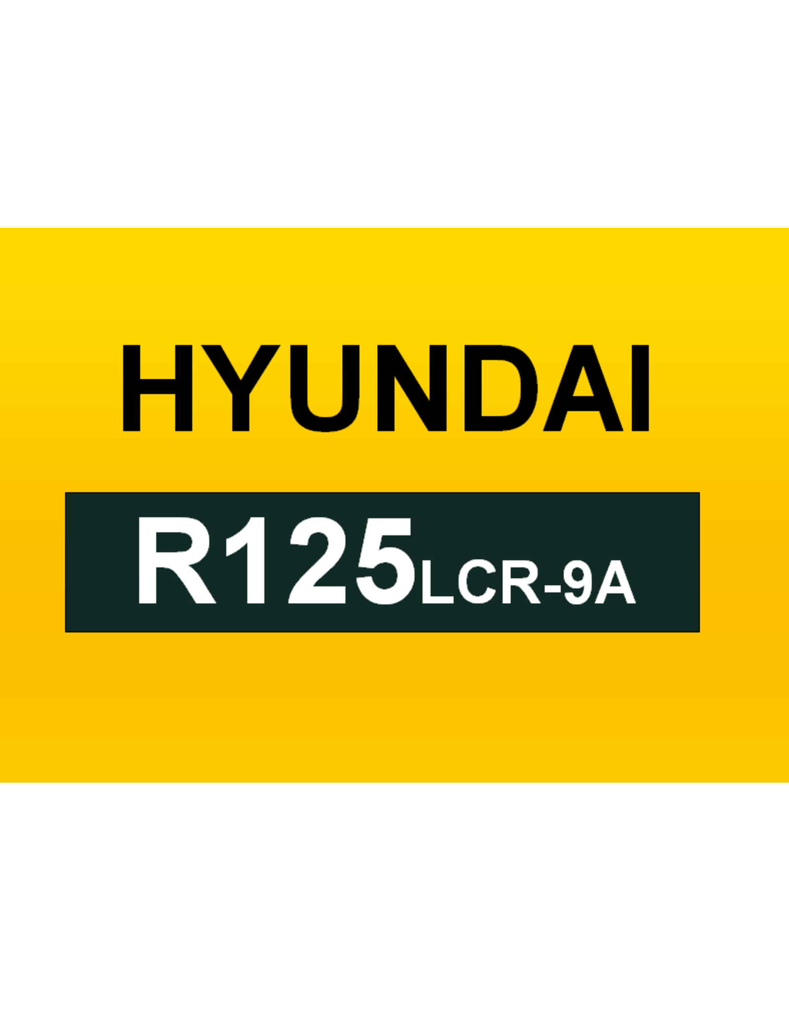 Echle Hartstahl GmbH FOPS pour Hyundai R125LCR-9A