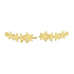 Oorbellen ster oorklimmers - sterling zilver verguld - 1817