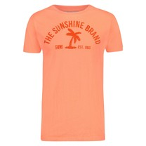 Shiwi Shiwi  - Men's T-Shirt - Round Neck - Palm - Juicy Orange