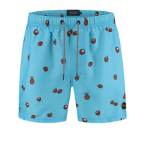 Shiwi Shiwi - Men's Swim Short - Coco