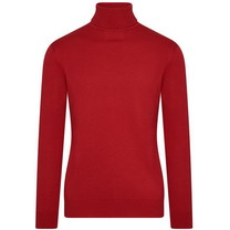 Ferlucci DioRise - Exlusive Men`s Pullover with Turtleneck - Red