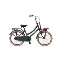 Altec Urban Transportfiets 22 inch  Gray/Pink