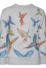 Ao76 Ao76 sweater vogels