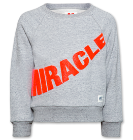 Ao76 sweater grijs miracle