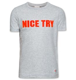 Ao76 T-shirt grijs nice try