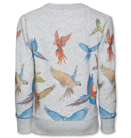 Ao76 sweater vogels