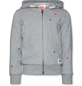 Ao76 sweater rits kap grijs