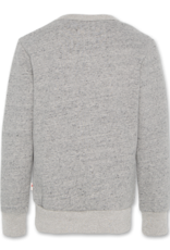 Ao76 sweater licht grijs tijger