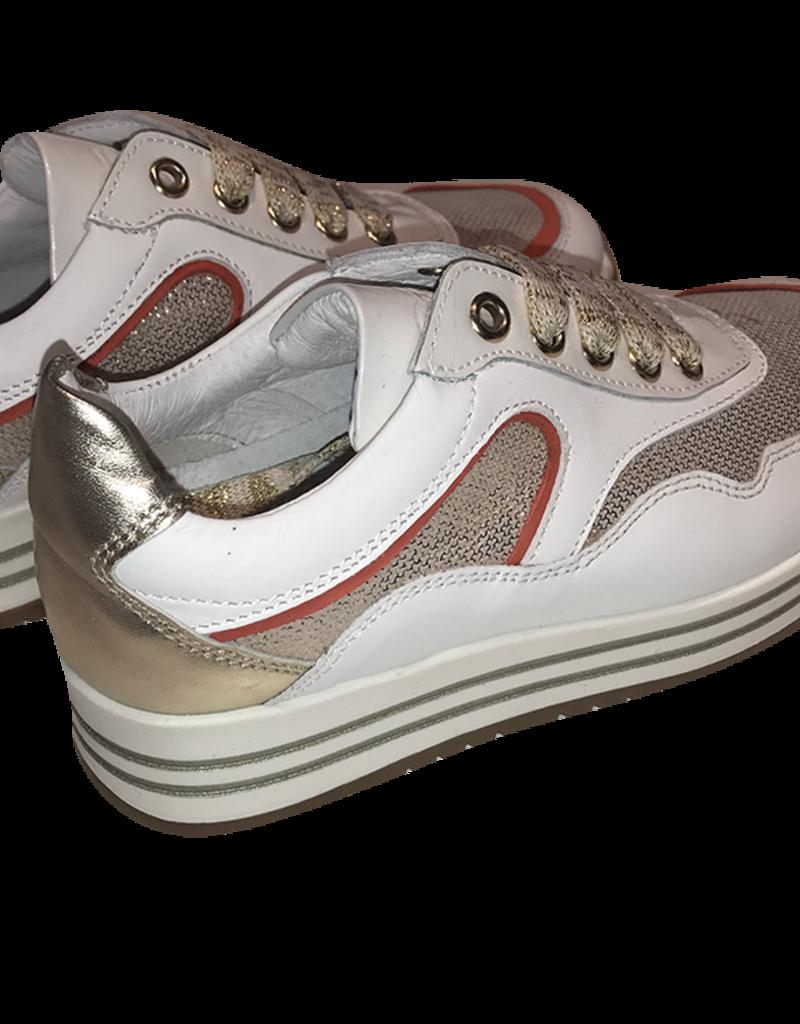 RTB/Hoops sneaker wit met goud en koraal