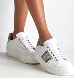 RTB/Hoops sneaker wit goud tijger