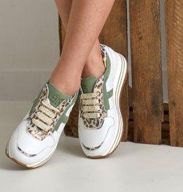 RTB/Hoops sneaker wit kaki en leopardprint