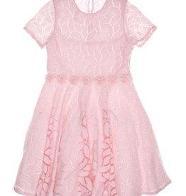 Gymp roze jurk kant gevoerd