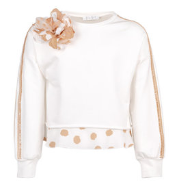 Elsy sweater wit streep biscotto