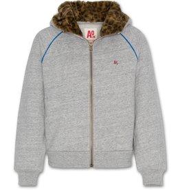 AO76 grijze hoodie met rits