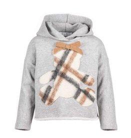 Elsy grijze hoodie met ruiten beer
