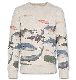 AO76 lichtgrijs mele sweater  met vissen