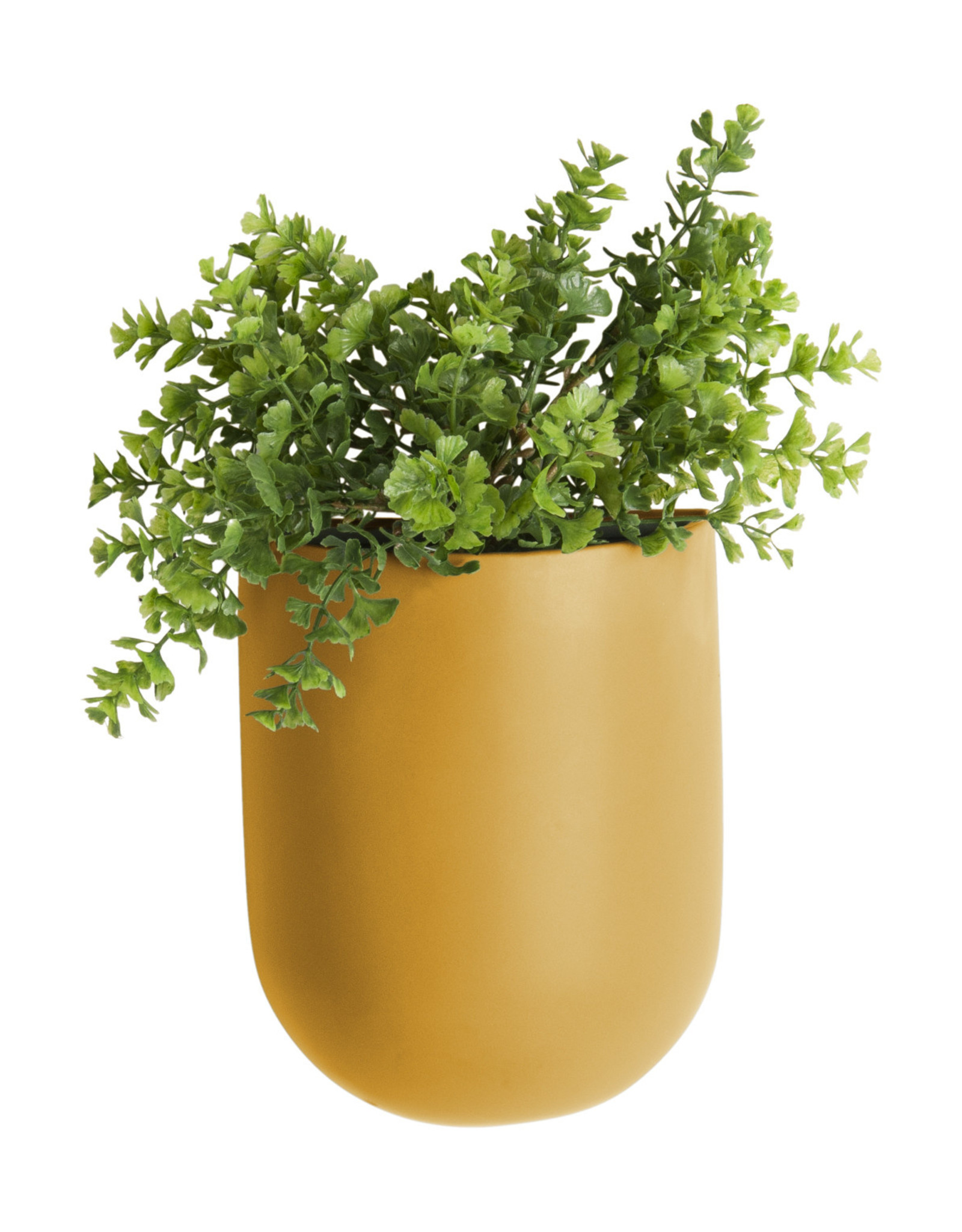 Present Time Present Time Wall plant pot