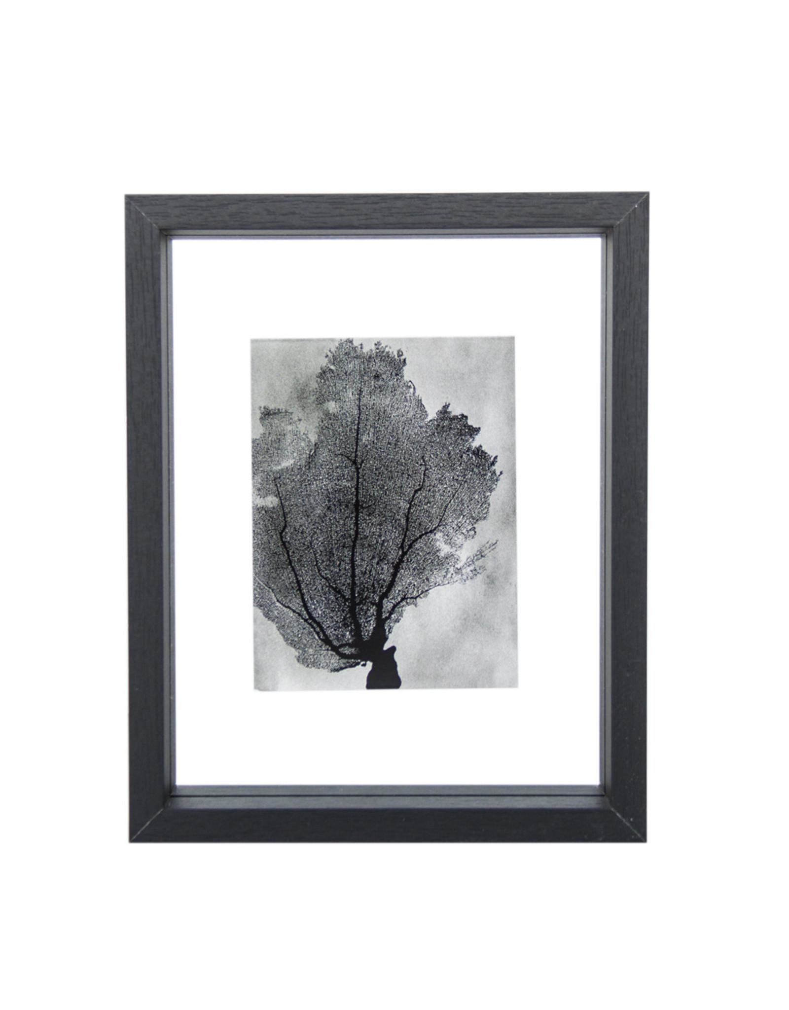 Urban Nature Culture UNC fotolijstje small zwart