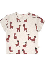 Your Wishes Your Wishes Laidback Lama Loose Tee