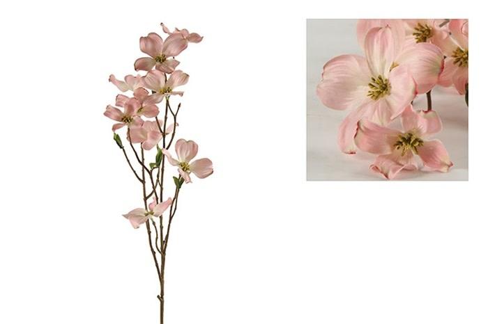 Dogwood tak Fiona M roze