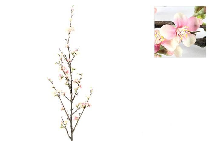 Bloesem tak Quince L roze