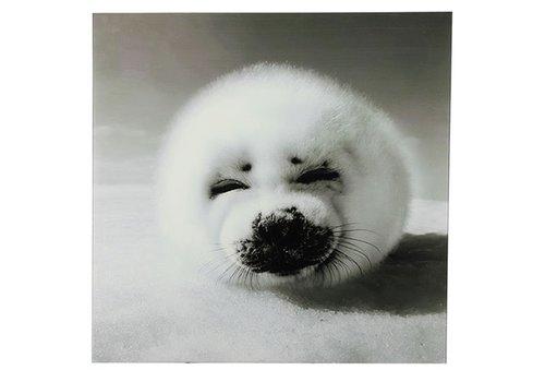 COUNTRYFIELD Schilderij zeehond vk Wild life L zwart/wit