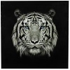 Schilderij tijger vk Wild life L zwart/wit