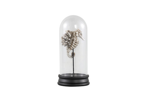 PTMD LISSE SILVER POLY SEAHORSE STATUE GLASS BELL JAR