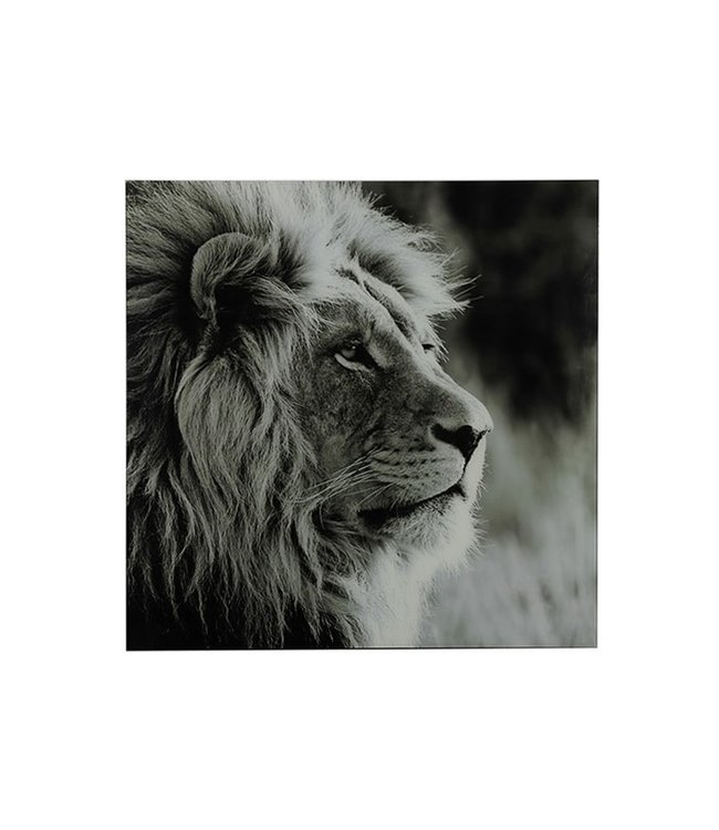 Schilderij leeuw A vk Wild life L zwart/wit