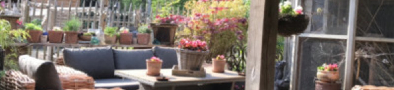 Hoe maak je een tuin gezellig?