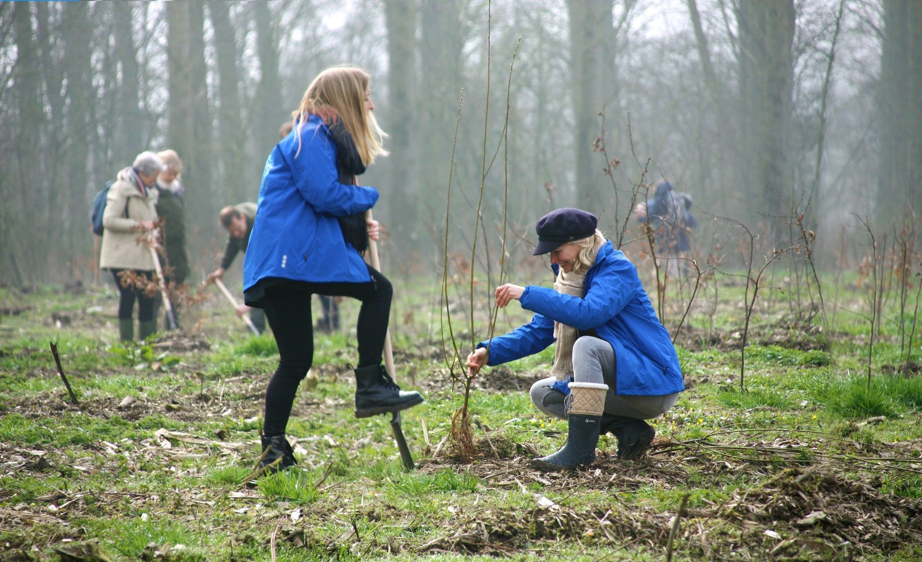 Team bomen planten