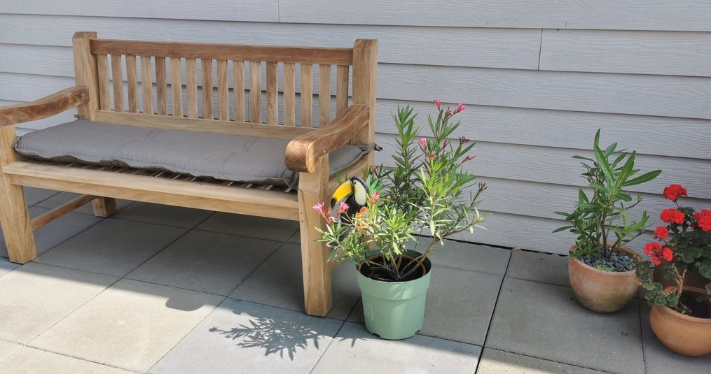 Wat zijn de redenen om voor een houten tuinset te kiezen?