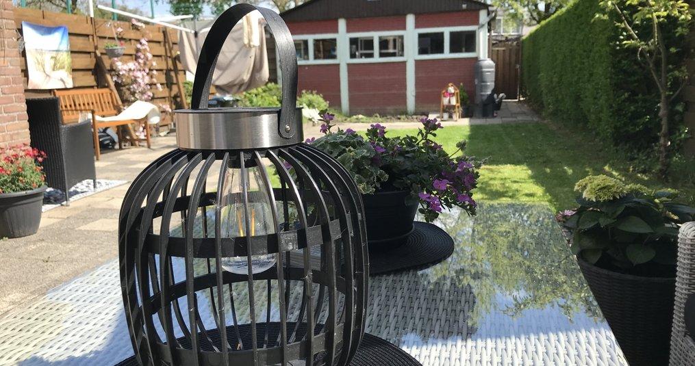 Kies jij voor een heg of een schutting in je tuin