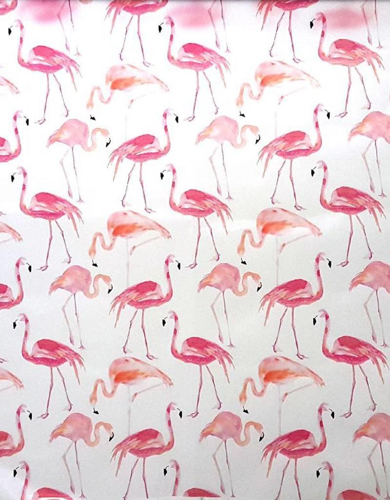 Rainy flamingo's